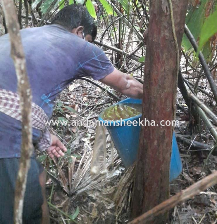 80 KG handia recovered and huge quantity of Lahan Destroyed in N&MA